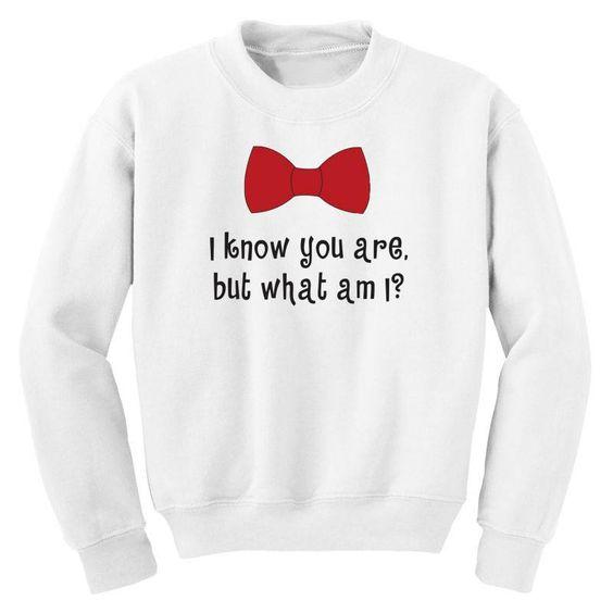 What I am i Sweatshirt SD21M1